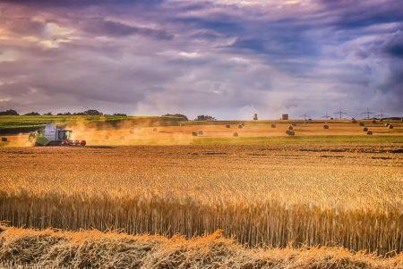 От пожарната припомнят задълженията на земеделците за опазване на реколтата