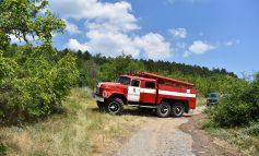 Огнеборци спасиха близо 1 000 декара гора при пожара край Котел