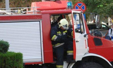 Пожарникари спасиха паднало в шахта куче