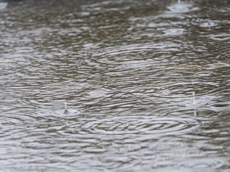26 литра на квадрат дъжд в Сливен снощи, днес повече