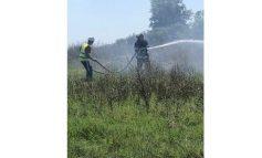 Пожари горяха на Батмиш и Хамам баир