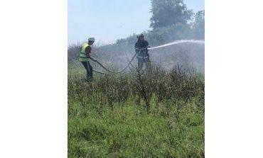 Огнеборци гасиха сухи треви