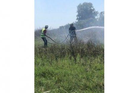 150 декара лозе изгоря заради подпалено стърнище