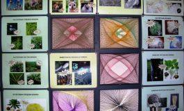Текстилният музей в Сливен се включва в Европейската нощ на учените