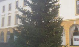 Тази вечер ще палят лампичките на елхата. Вижте културните събития през декември