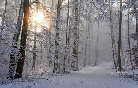 До 30 см сняг в Сливенско. Ограничиха движението през Котленския проход