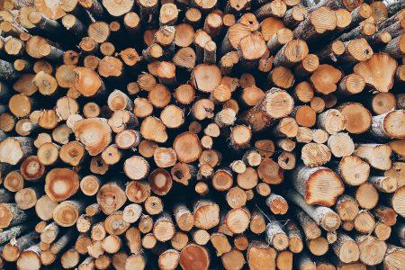 Общината пак предоставя дърва на хора в неравностойно положение