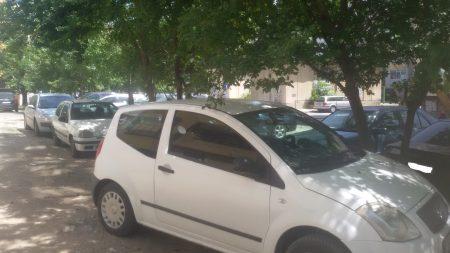Сливналии, паркирайте в градинките!