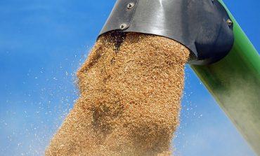 Камион със зърно се преобърна в Сливен