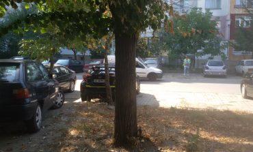 Докога в Сливен ще глобяват коли на паркинг, но не и в градинки?!
