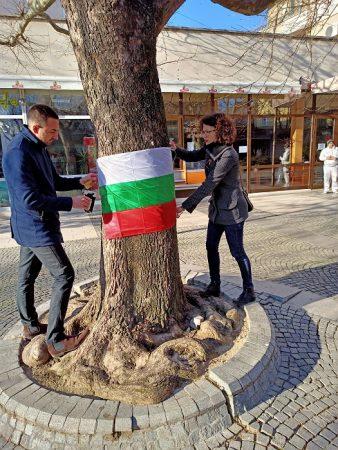 Младежи от ГЕРБ украсиха с националното знаме главната улица