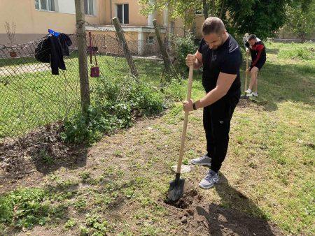 Младежите от ГЕРБ-Сливен залесиха 20 липи по случай Деня на Европа