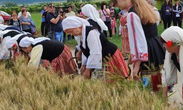 """Кандидати за народни представители от ГЕРБ на """"Жътва"""" в Тополчане"""